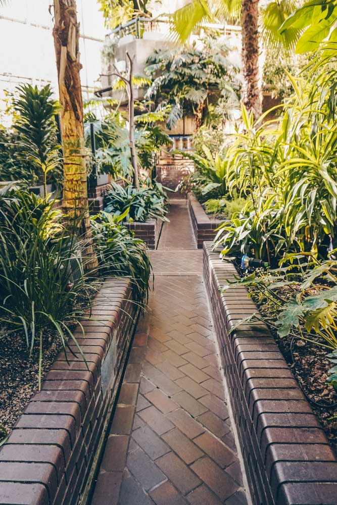 Walkway through the conservatory