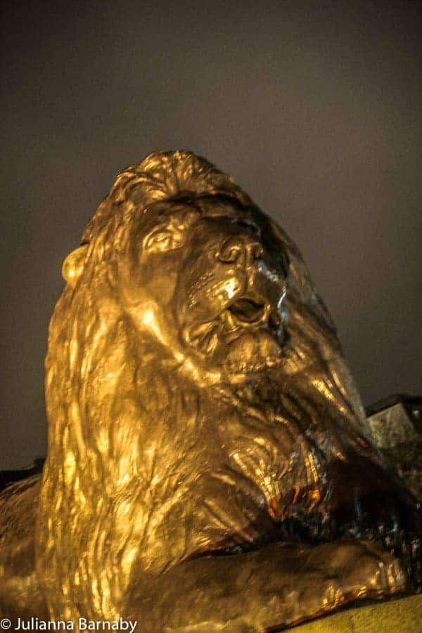 Lions Trafalgar