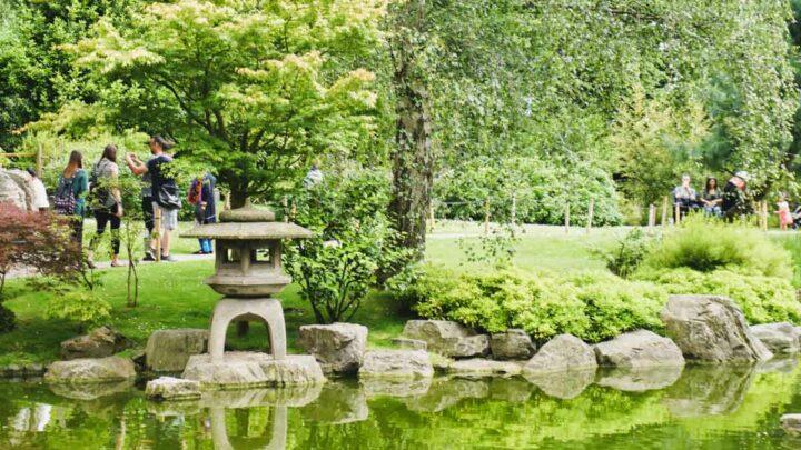 Kyoto Garden: Discover London's Beautiful Japanese Garden