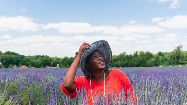 Gorgeous Lavender Fields in London
