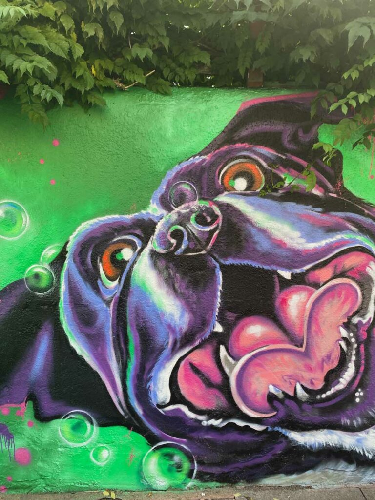 Excitable dog mural by Layla in Penge