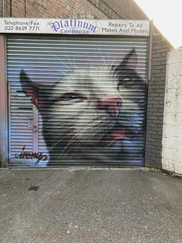 Cat by Irony in Penge